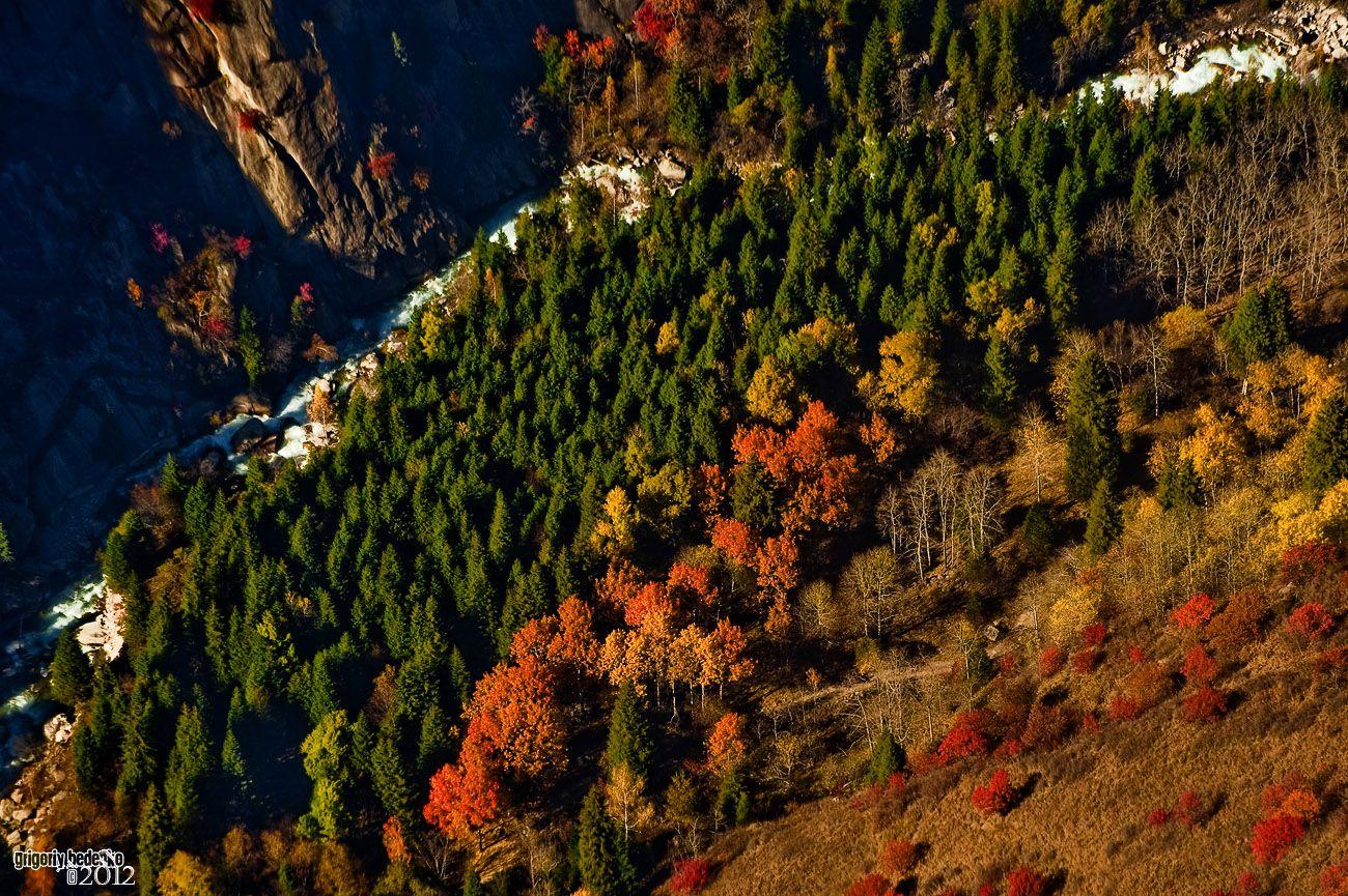 Осень делит горную растительность по спектральной схеме....