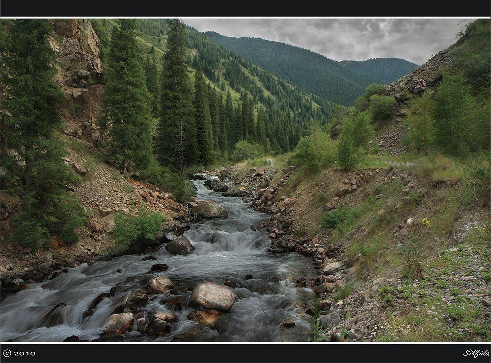Быстрые воды реки Тургень.
