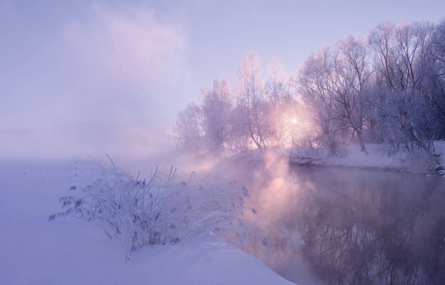 Фото в тумане с лучами и солнцем