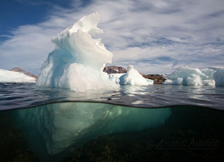 Меж тем моторка с охотником медленно приближалась ко мне, лавируя меж айсбергов. Инуит с карабином в руках, во что-то напряженно вглядывался по правому борту. Я был по левому. 150 метров… 120… 100 Мысль пришла, когда до лодки оставалось метров 80 и охотник, объезжая очередную льдину повернул голову и увидел меня. Я вытащил из воды огромный бокс с фотоаппаратом и прицелился в него. Наверное, нерпы в Гренландии еще не целились в охотников. Из-за бокса я не смог увидеть его лица, но услышал отчаянный визг мотора. Лодка, резко развернувшись на месте и не разбирая дороги, уходила к морю./   А здесь фотография того самого инуита-охотника сделанная Майком Рейфманом http://www.photosight.ru/photos/4346026/