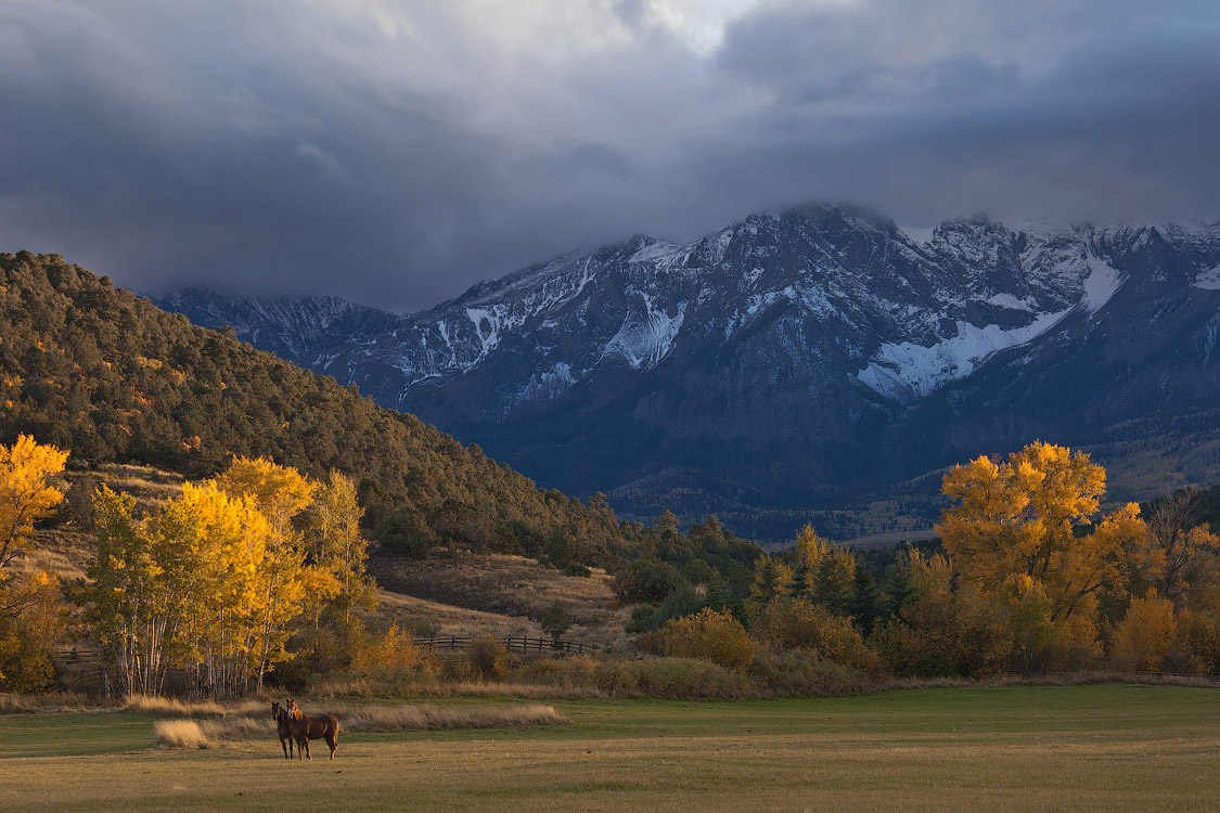 Осенняя Пастораль | Fall Pastoral, San Juan Mountains, Colorado, USA