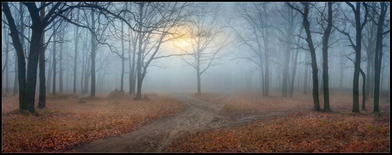 На перекрестке сказочных дорог...кто куда? Я пошел направо:-)
