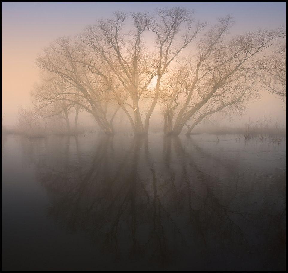Солнце скоро одержит победу над туманом, а следовательно и над сказкой... К этому времени я уже устал снимать, если честно:-)