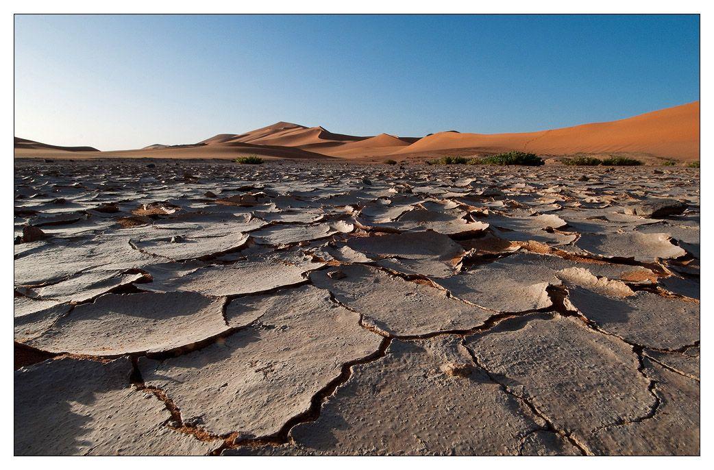 В пыли дорожной тонут ноги.  Один в пустыне далеко.  Не лжи, ни сплетен – ничего.