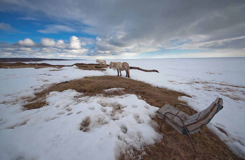 Терский берег, Белое море...