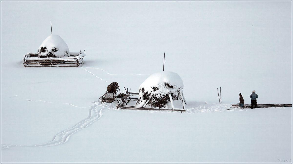 Хозяева приехали за стожком, за тем самым, что отсюда уже увезен: 35photo by Yuri Ovchinnikov