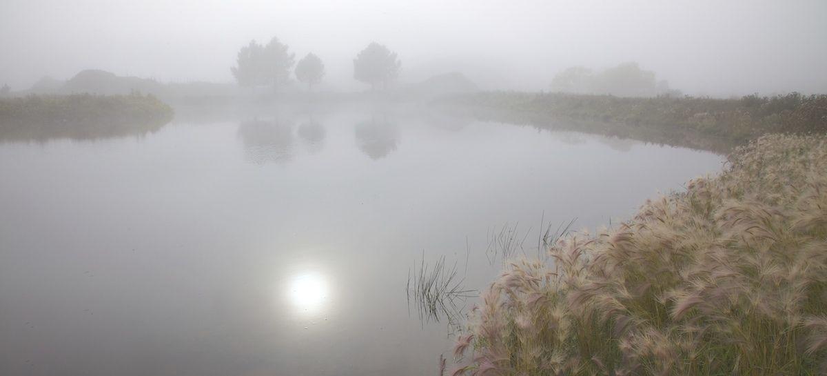 Туманное солнце