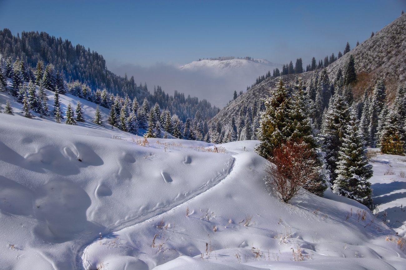 Сонник поможет растолковать увиденные снежные горы, или то, что вы поднимались или спускались с горных склонов!