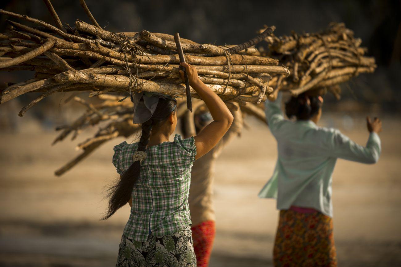 Сборщицы дров. Нгапали.