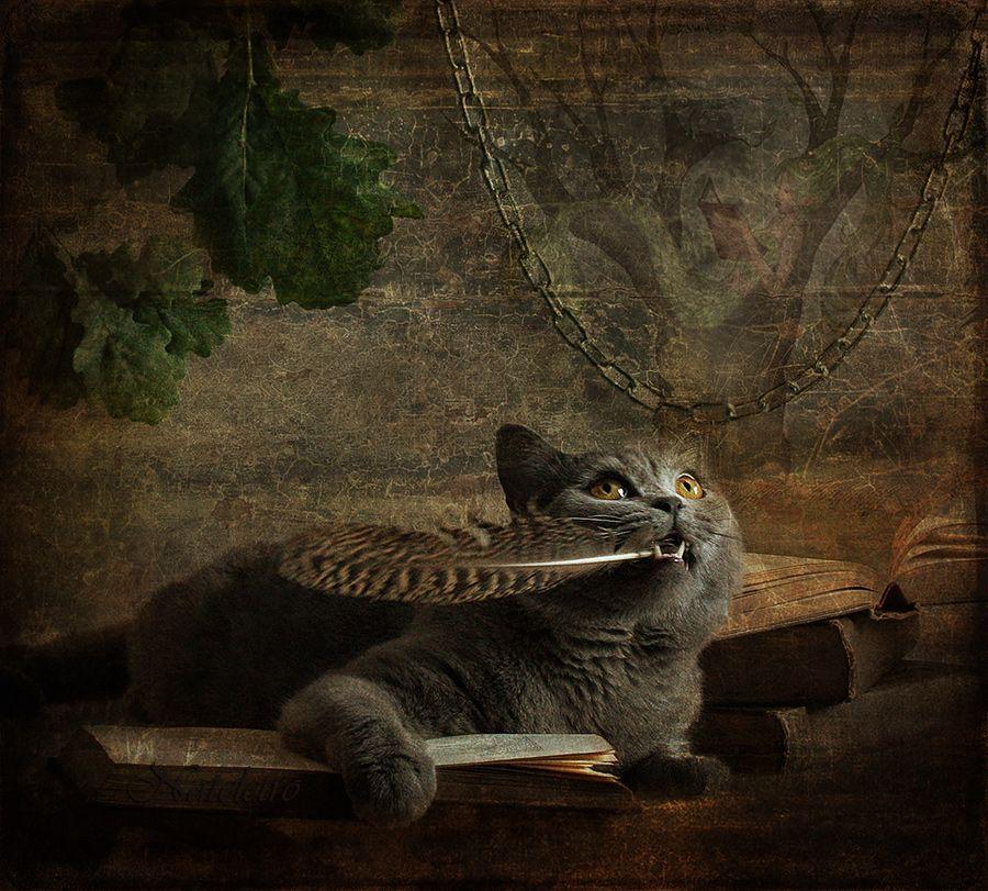 И днём и ночью кот учёный Всё ходит по цепи кругом...