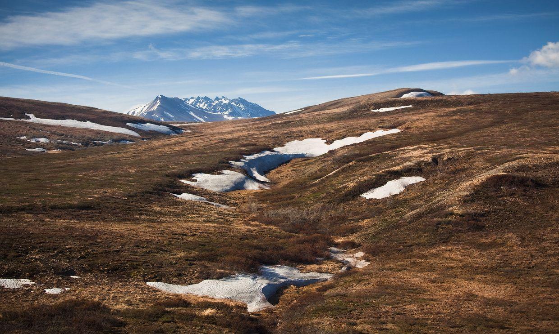 3. Лето в тундре короткое, холодное, с частыми заморозками и большим количеством облачных дней. Зима длится очень долго, лютые морозы сковывают землю на протяжении 7—8 месяцев