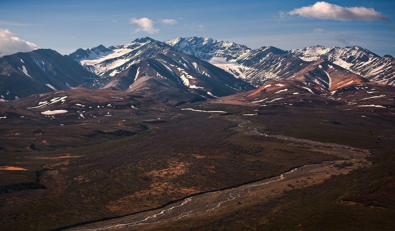 5. Из-за вечной мерзлоты и обилия влаги в тундре преобладают болотные торфянистые почвы. Ближе к таежной полосе, в так называемой лесотундре, почвы болотно-подзолистые.