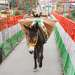 Ежеутренний переход по мосту через Гангу. Ришикеш