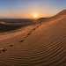 Песчаный бархан Сарыкум имеет высоту 262 метра и является вторым барханом в мире по этому показателю, уступая лишь барханам Намибии.