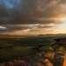 Сундуки особо прекрасны на закате и на рассвете.