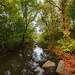 Живая Вода Арбузинки 1