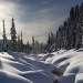 4 Зимний Амзас