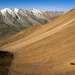 Заилийский Алатау. Верховья реки Средний Талгар с видом на ледник Молодежный.