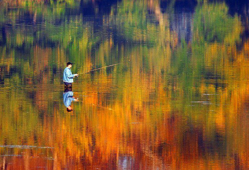 акварель, осень photo preview