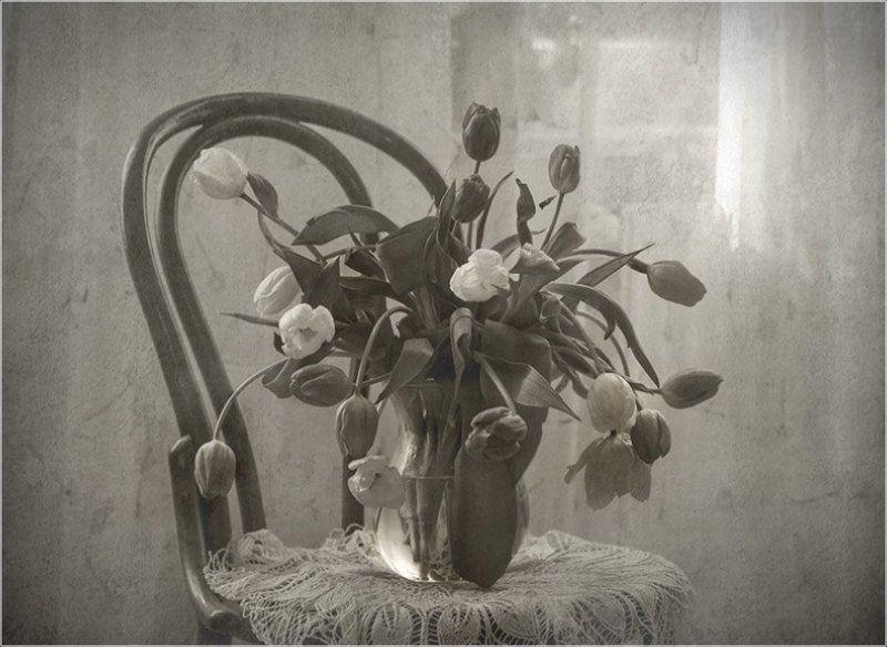 foto liubos, натюрморт, тюльпаны Полдень...photo preview