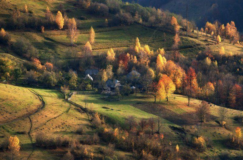 карпаты, осень, свет ...Осень...photo preview