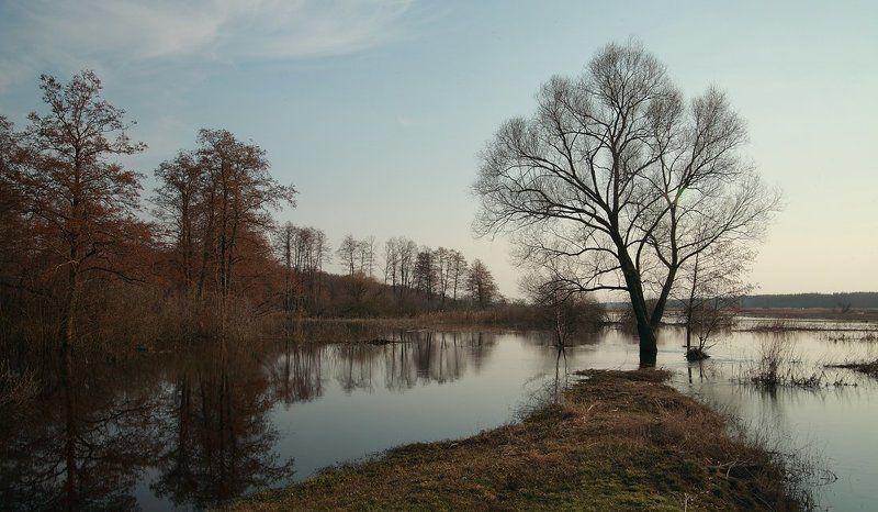 Разлив на реке Усманкаphoto preview