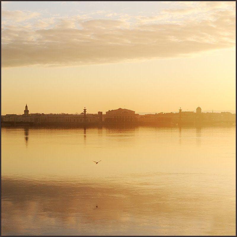 петербург, центр, нева, закат, квадрат Простая закатная питерская квадратная зарисовка с Невыphoto preview