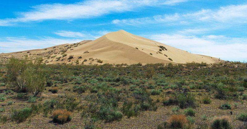 nikon, d7000, kazakhstan, казахстан, landscape Одинокий барханphoto preview