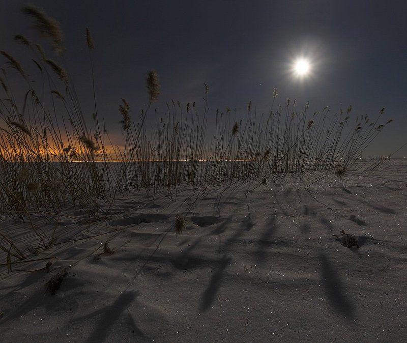 полнолуние, луна, март, световая кисть ~69~photo preview