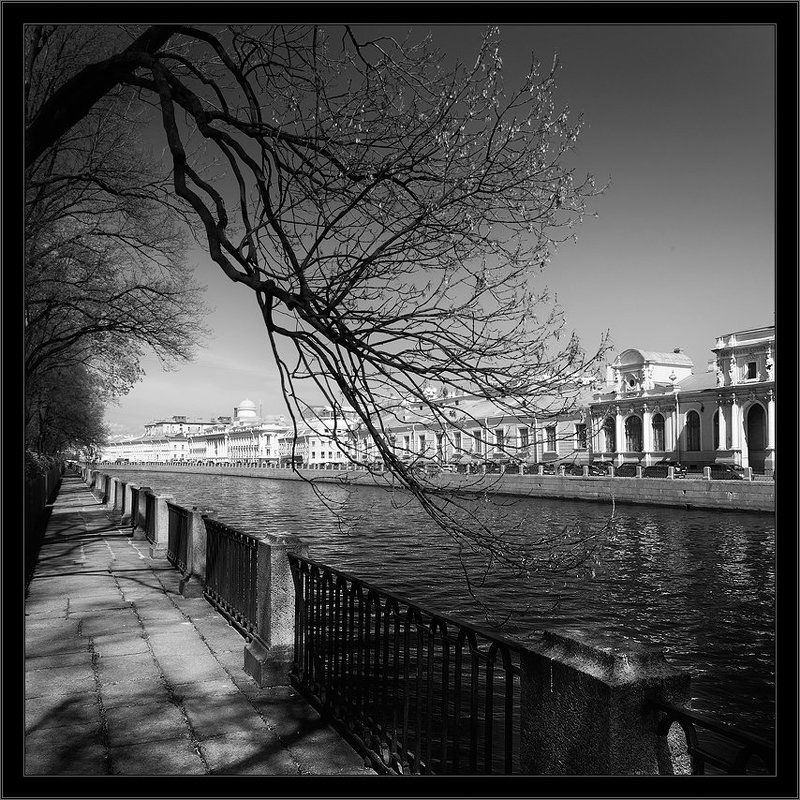 петербург, центр, фонтанка, чб, квадрат Черно-белая питерская зарисовка с видом набережной Фонтанки из Летнего садаphoto preview