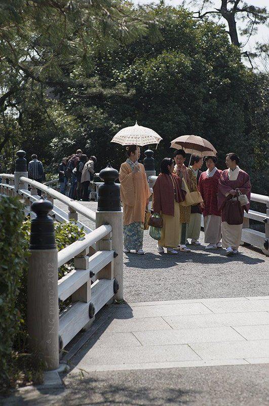 Киотский протокол.photo preview