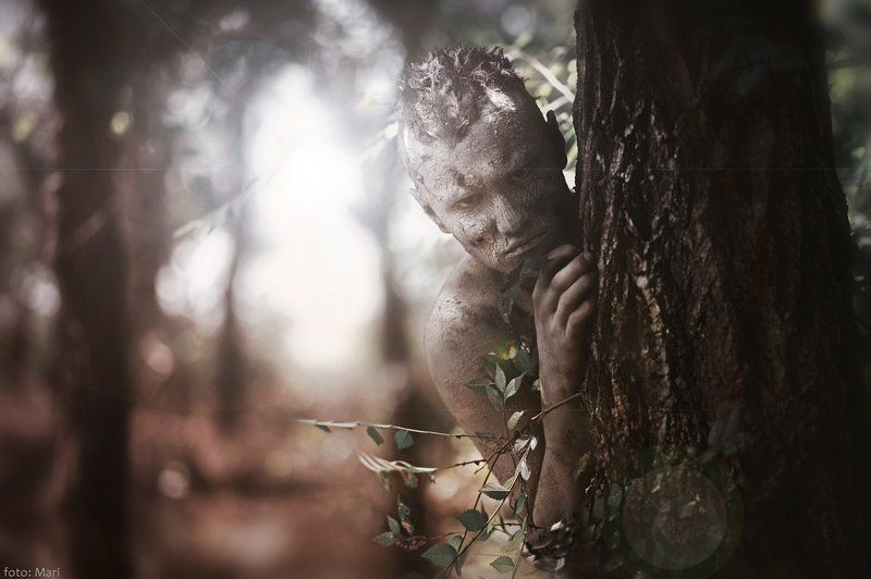леснойphoto preview