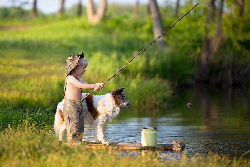 Друзья, Озеро, Рыбак, Рыбак собака рыбалка друзья озер, Рыбалка, Собака, Удочка Рыбакиphoto preview