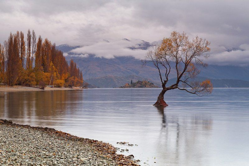 Autumn, Lake Wanaka, New Zealand, Май, Новая Зеландия, Осень Outcastphoto preview