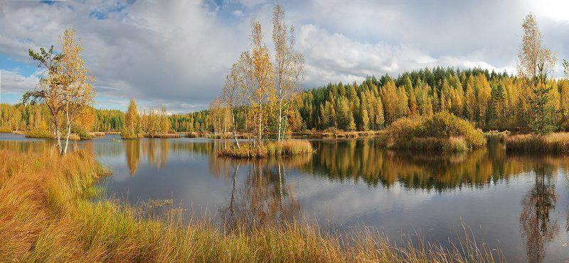 болото, осень, панорама, пейзаж Панорама,снятая через несколько минут после предыдушейphoto preview