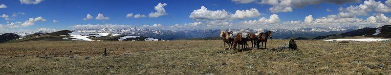 Алтай, Катунский хребет, Южно-чуйский Белки Алтаяphoto preview