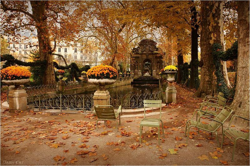 Осенний хаос у фонтана Медичиphoto preview