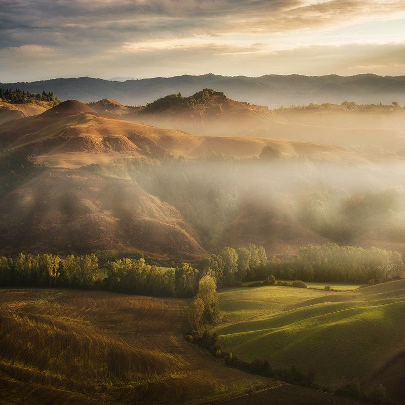 mystical waving fields\\ Tuscanyphoto preview