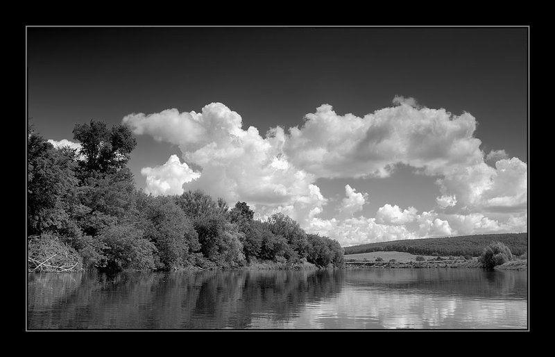 лето, река, чб ***photo preview
