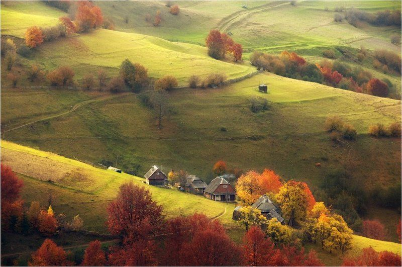 Осенние пасторали...photo preview