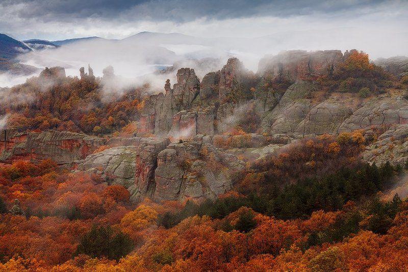 Autumn fogsphoto preview