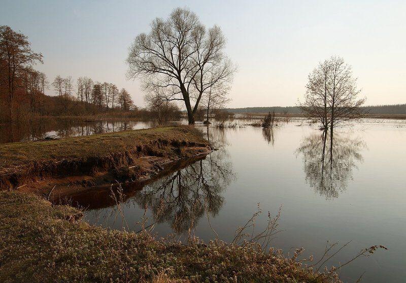 Весна, Воронежская область, Разлив, Река Усманка Усманка в разливеphoto preview