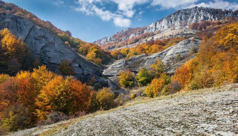 Октябрь в Крымуphoto preview