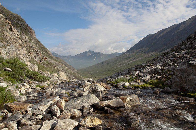 Речка быстрая, каменистая в нашей местности протекаетphoto preview
