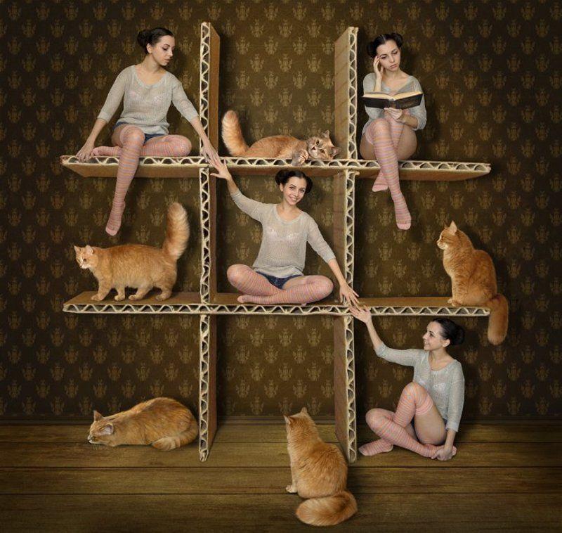 Девочки, Кошки, Крестики-нолики, Юмор \