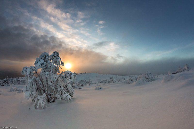 Закат, Кольский полуостров, Ноябрь, Сказка, Туман В закатном тумане.photo preview
