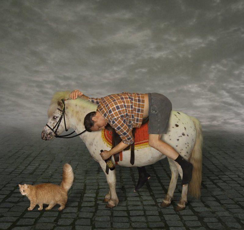 Белый конь, Принц, Юмор Про Принцев и Коней... :))photo preview