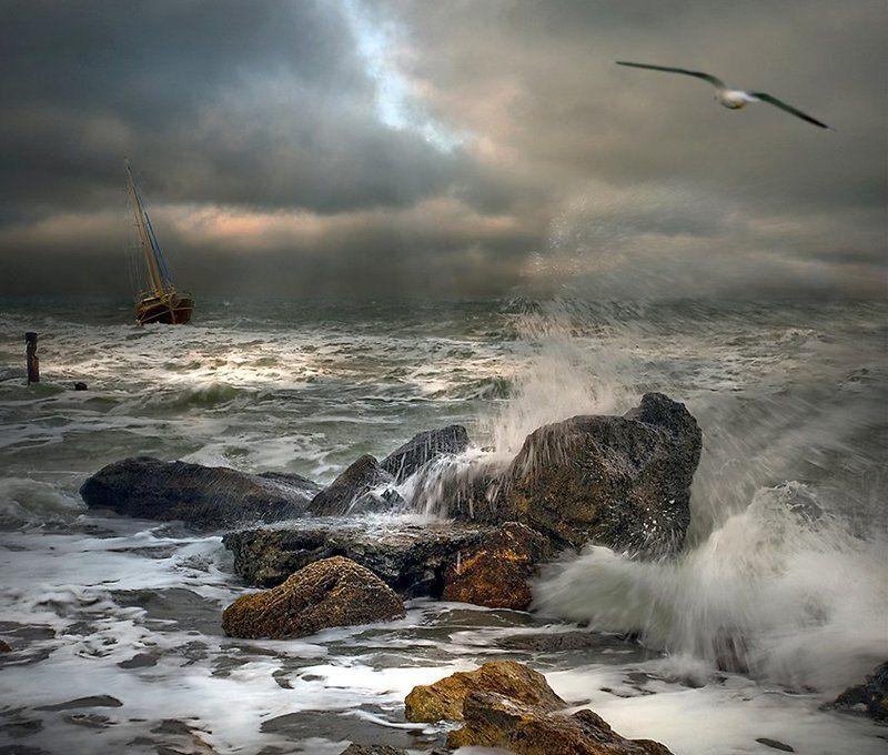 комп-арт, море, шторм, ветер, волны, яхта, чайка, камни, lad_i_mir Обыкновенный штормphoto preview