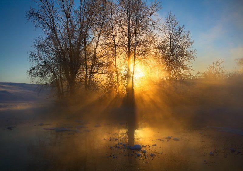 Вечерний свет.photo preview