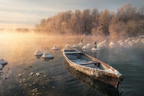 лодки деда мазая всемирная паутина зоомагазин  правовой адрес